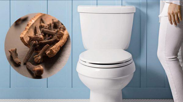 Cravo-da-índia ajuda a limpar o banheiro.