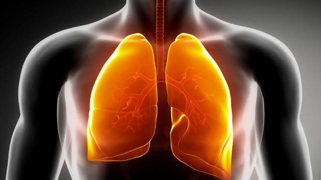 Lista traz 10 alimentos para limpar os pulmões naturalmente e sem uso de medicamentos industrializados.
